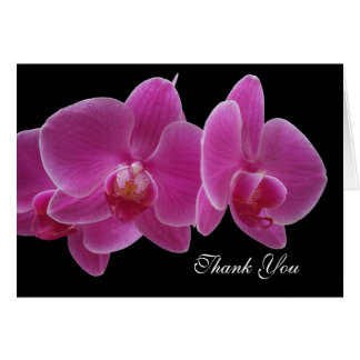 Orchid Administrative Professionals Day Card