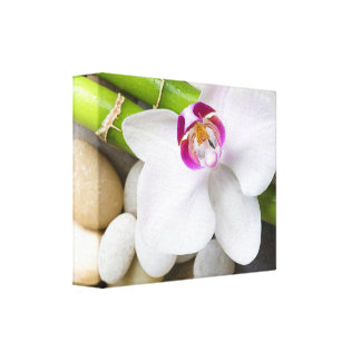 orchid and Bamboo Canvas Print