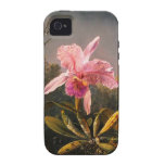Orchid and Three Brazilian Hummingbirds Case For The iPhone 4