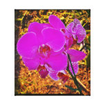 ORCHID BEAUTY STRETCHED CANVAS PRINTS