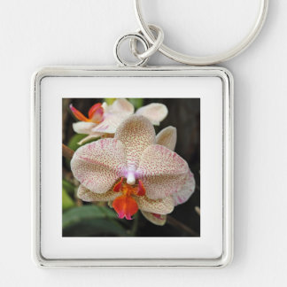 Orchid Bloom 1 Keychains