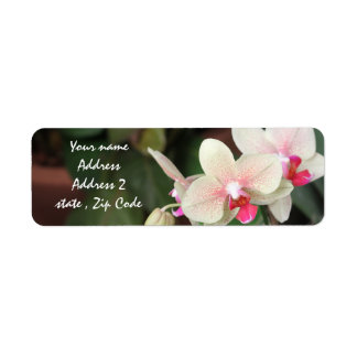 Orchid Blooms Label