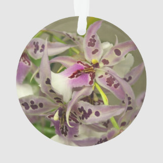 Orchid blooms ornament