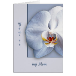 Orchid Blossom Card