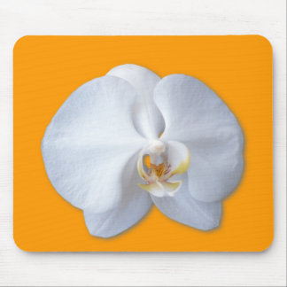 Orchid Blossom Mouse Pad