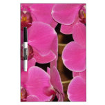 Orchid Blossoms Floral Garden Destiny Nature Dry-Erase Whiteboard