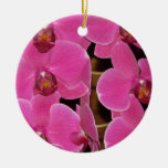 Orchid Blossoms Floral Garden Destiny Nature Christmas Tree Ornament