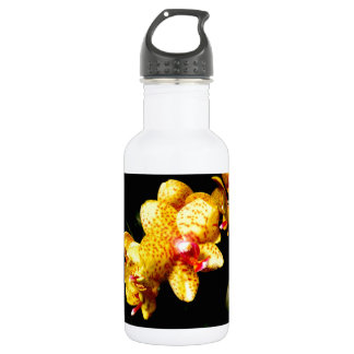 Orchid Blossoms Wedding Blossoms Stainless Steel Water Bottle
