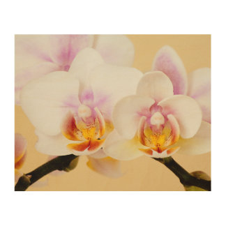 Orchid Blossoms Wedding Photos Keepsake Memories Wood Wall Art
