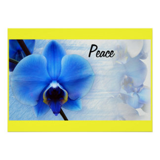 Orchid Blue Flowers Peace Love Destiny Gifts Poster