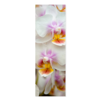 Orchid Bookmark Business Cards