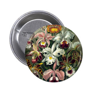 Orchid Botanical Print Button