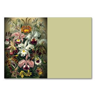Orchid Botanical Print Card