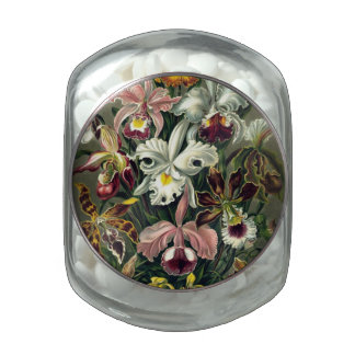 Orchid Botanical Print Jelly Belly Candy Jar