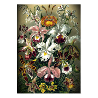Orchid Botanical Print Large Business Card