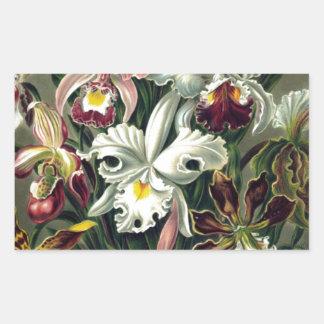 Orchid Botanical Print Rectangular Sticker