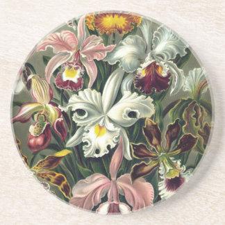 Orchid Botanical Print Sandstone Coaster