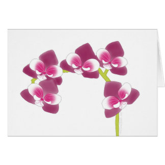 Orchid Branch Greeting Card