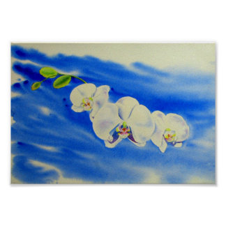 Orchid Breeze Poster