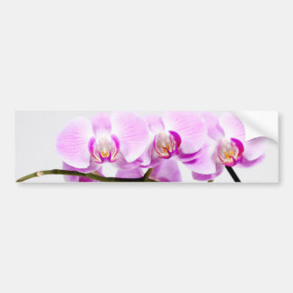 orchid bumper sticker