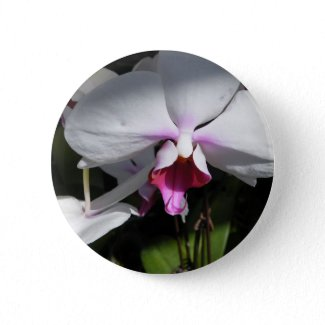 Orchid Button button