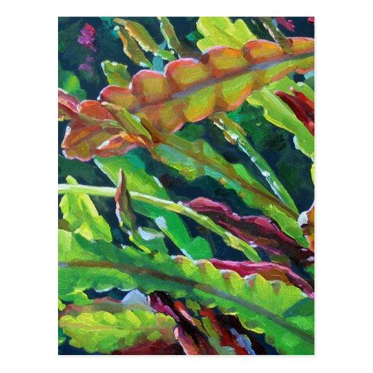 Orchid Cactus2 Postcard