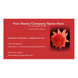 Orchid Cactus - Epiphyllum Ackermannii - Blossom Business Card