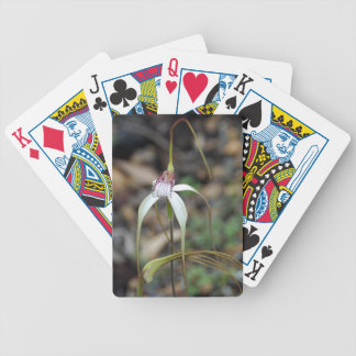 Orchid-Caladenia longicauda Playing Cards