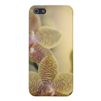 Orchid Case Cases For iPhone 5