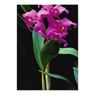 Orchid cattleya (Hailstorm Nilene) 5x7 Paper Invitation Card