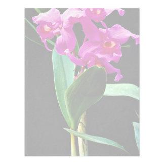 Orchid cattleya (Hailstorm Nilene)  flowers Letterhead