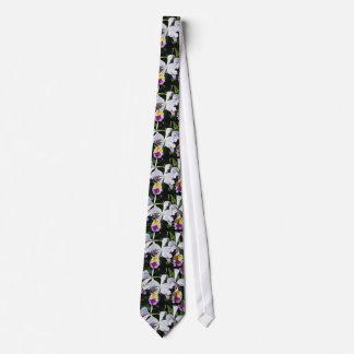 Orchid, cattleya-hybrid, cattleya (trianae x black tie