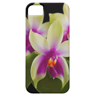 Orchid Cell Phone Case iPhone 5/5s iPhone 5 Cover