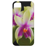 Orchid Cell Phone Case iPhone 5/5s iPhone 5 Covers