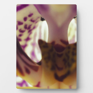 Orchid Center Plaque