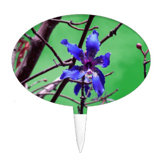 orchid colorized blue against green cake topper