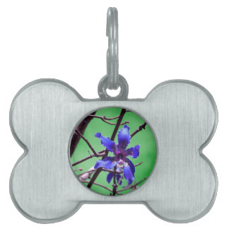 orchid colorized blue against green pet tag