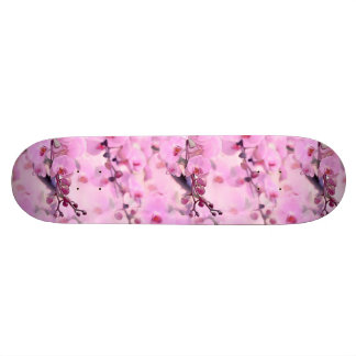 orchid dream skateboard deck