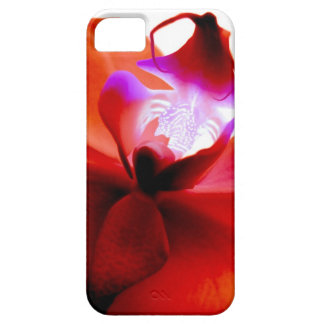 Orchid Dreaming iPhone5 Case iPhone 5 Case