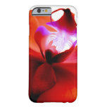 Orchid Dreaming iPhone 6 case