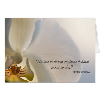 Orchid Elegance Thank You for Your Sympathy Card
