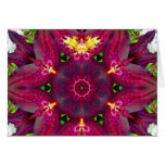 Orchid Fairy Mandala Card