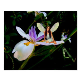 Orchid Fairy Poster