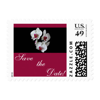 Orchid Fantasy Postage Stamp