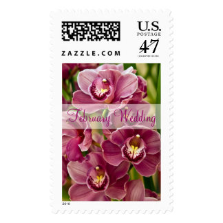 Orchid • February Wedding Stamp