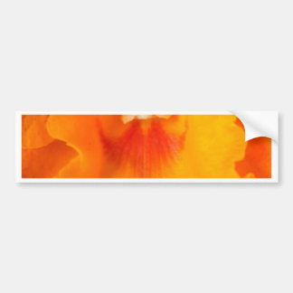 Orchid Flower Bumper Stickers