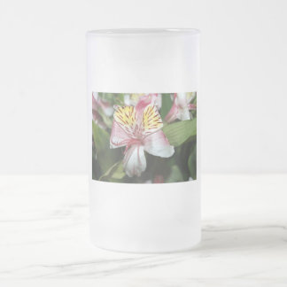 Orchid flower close up, pink white yellow photo frosted glass beer mug