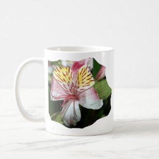 Orchid flower close up, pink white yellow photo mug