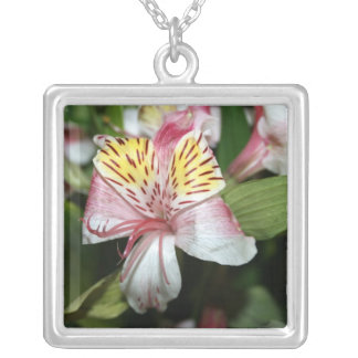 Orchid flower close up, pink white yellow photo square pendant necklace