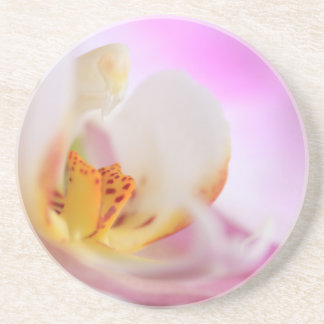 Orchid Flower Coaster